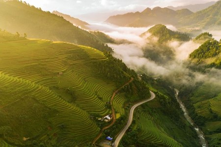 Picture for category Pictures that capture Vietnam's stunning beauty