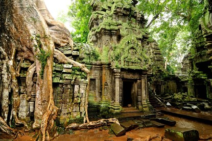 Ta Prohm temple - Siem Reap Day Tour